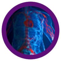 Myocardial Perfusion Imaging - MMI Merivale Medical Imaging